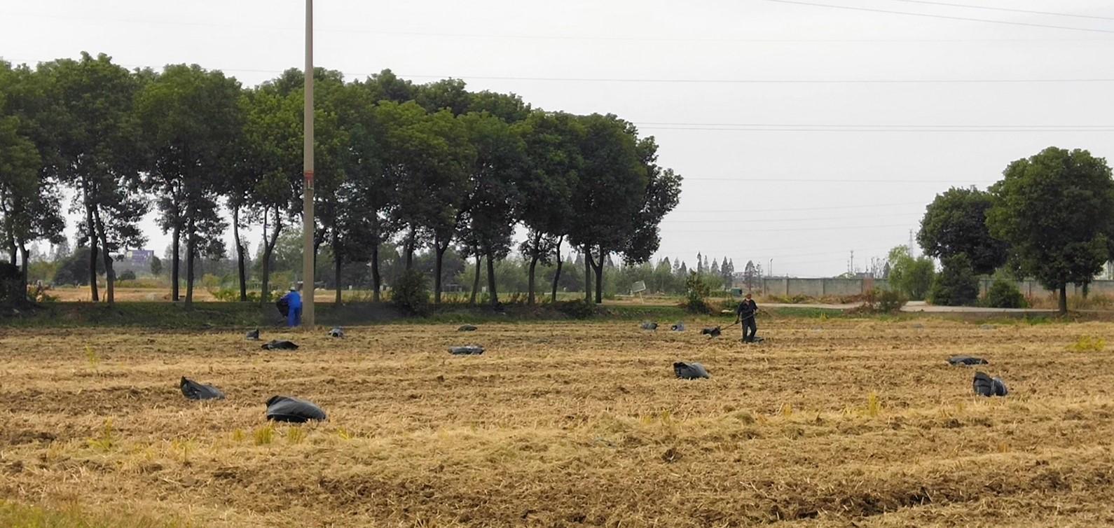 無錫惠山區農田重金屬土壤修復